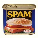 SPAM-uri in romana pe Blog